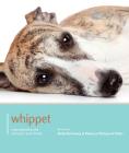 Whippet (Dog Expert) Cover Image