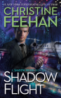 Shadow Flight (A Shadow Riders Novel #5) Cover Image