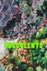 Succulents Cover Image
