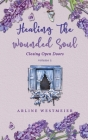 Healing the Wounded Soul: Closing Open Doors volume 2 Cover Image