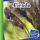 Cicada (21st Century Junior Library: Creepy Crawly Critters) Cover Image