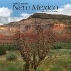 New Mexico Wild & Scenic 2020 Square Cover Image