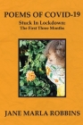 POEMS OF COVID-19, Stuck in Lockdown: The First Three Months Cover Image
