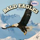 Bald Eagles (American Animals (Powerkids)) Cover Image