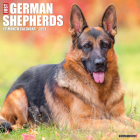 Just German Shepherds 2021 Wall Calendar (Dog Breed Calendar) Cover Image