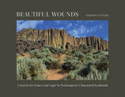 Beautiful Wounds: A Search for Solace and Light in Washington's Channeled Scablands Cover Image