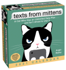 Texts from Mittens 2021 Day-to-Day Calendar Cover Image