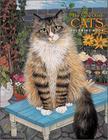 Mimi Vang Olsen Cats Color Bk Cover Image