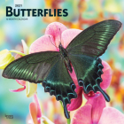 Butterflies 2021 Square Cover Image