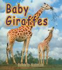 Baby Giraffes (It's Fun to Learn about Baby Animals) Cover Image