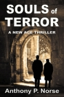 Souls of Terror - A New Age Thriller Cover Image