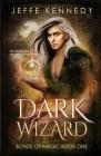 Dark Wizard: a Dark Fantasy Romance Cover Image