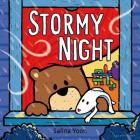 Stormy Night Cover Image