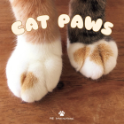 Cat Paws Cover Image