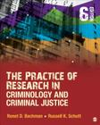 The Practice of Research in Criminology and Criminal Justice Cover Image