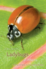 Ladybugs of Alberta: Finding the Spots and Connecting the Dots Cover Image