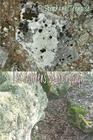 Les dolmens de Montcuq Cover Image