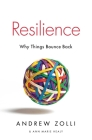 Resilience: Why Things Bounce Back Cover Image