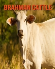 Brahman Cattle: Fun Learning Facts About Brahman Cattle Cover Image