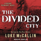 The Divided City Cover Image