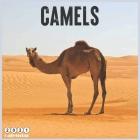 Camels 2021 Calendar: Official Camel Animals Wall Calendar 2021, 18 Months Cover Image