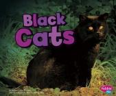 Black Cats (Pebble Plus: Halloween Fun) Cover Image