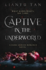 Captive in the Underworld: A Dark Lesbian Romance Novel Cover Image