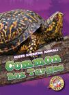 Common Box Turtles (North American Animals) Cover Image