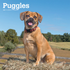 Puggles 2021 Square Cover Image