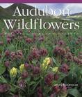 Audubon Wildflowers Wall Calendar 2006 Cover Image
