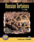 Russian Tortoises Cover Image
