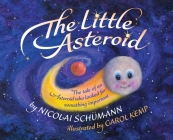 The Little Asteroid: The tale of an Asteroid who looked for something important Cover Image