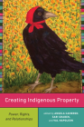 Creating Indigenous Property: Power, Rights, and Relationships Cover Image