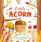 Nature Stories: Little Acorn: Padded Board Book Cover Image