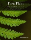 Fern Plant: How to grow and care Cover Image