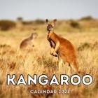 Kangaroo Calendar 2021: 16-Month Calendar, Cute Gift Idea For Kangaroo Lovers Women & Men Cover Image