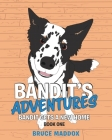 Bandit's Adventures: Bandit Gets a New Home Cover Image