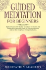 Guided Meditation For Beginners: Highly Effective Self-Healing Techniques For Anxiety And Pain Relief, Unlock The Power Of Chakra Awakening And Get Mo Cover Image