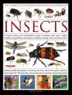 The Complete Illustrated World Encyclopedia of Insects: A Natural History and Identification Guide to Beetles, Flies, Bees, Wasps, Mayflies, Dragonfli Cover Image