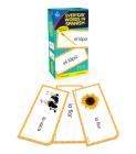 Everyday Words in Spanish: Photographic Flash Cards: Palabras de Todos Los Días: Fotográfico Cover Image