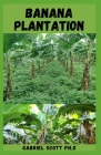 Banana Plantation: What You Need To Know About Banana Plantation, Growing, And Its Farming Cover Image