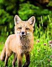 2020 Planner - Daily and Monthly Planner: The Perfect Gift - 2020 Planner for Fox / Nature Lovers. Men, Women and Kids Love These Diaries Cover Image