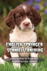 English Springer Spaniel Training: Learn In How To Teach Your English Springer Spaniel: How To Train A English Springer Spaniel To Do Things Cover Image