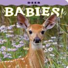Deer Babies! Cover Image