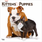 Kittens & Puppies 2021 Square Foil Cover Image