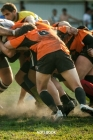 Notebook: Rugby (Sports #20) Cover Image