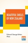 Beautiful Shells Of New Zealand: An Illustrated Work For Amateur Collectors Of New Zealand Marine Shells With Directions For Collecting And Cleaning T Cover Image