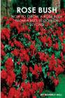 Rose Bush: Learn How To Grow A Rose Bush From A Bud, Bloom or Beyond Cover Image