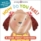 My Little World: How Do You Feel?: A Book About Emotions Cover Image