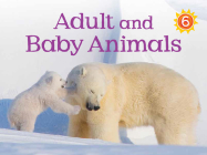 Adult and Baby Animals: English Edition Cover Image